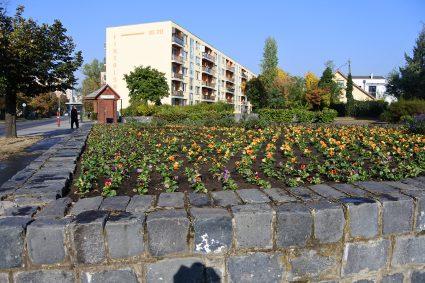 A színes virágok még szebbé teszik a kerületet és az őszt